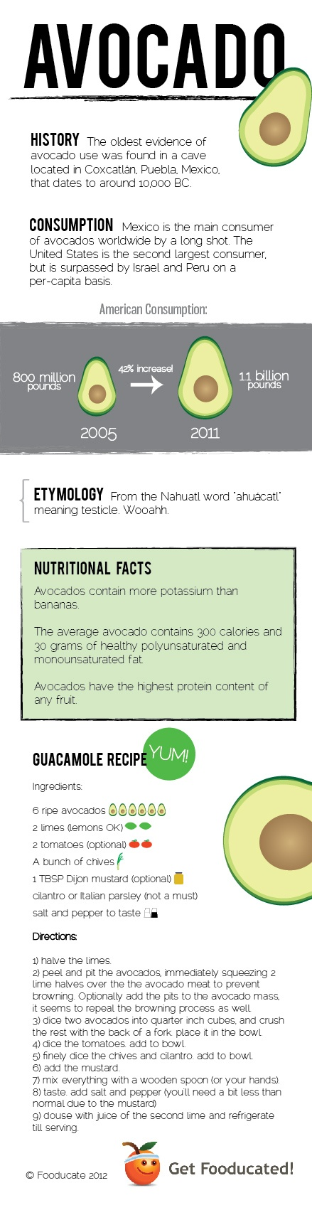 avocado infographic