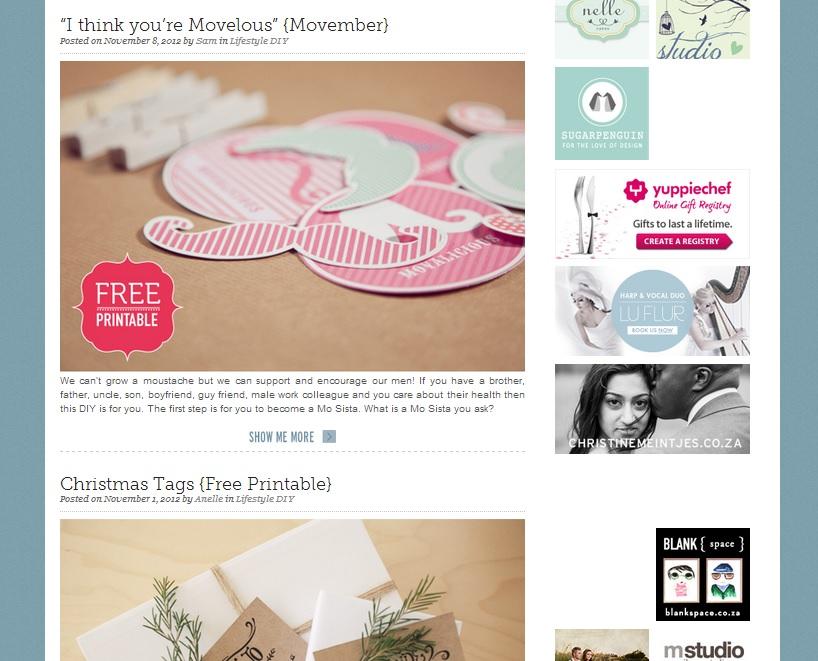 the pretty blog