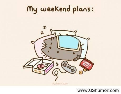 pusheen plans
