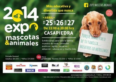expo_mascotas